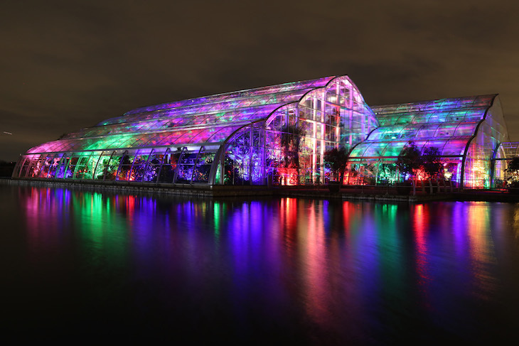 Get Your Glow On At Rhs Garden Wisley This Winter Londonist