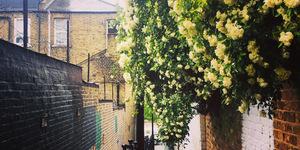 London's Most Beautiful Alleyways