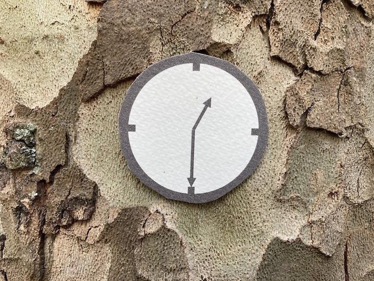 Clock on a plane tree