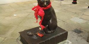 11 Famous London Cats