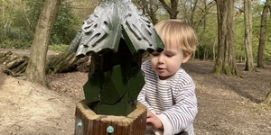 Have You Discovered The Fairy Wood In Barnet?