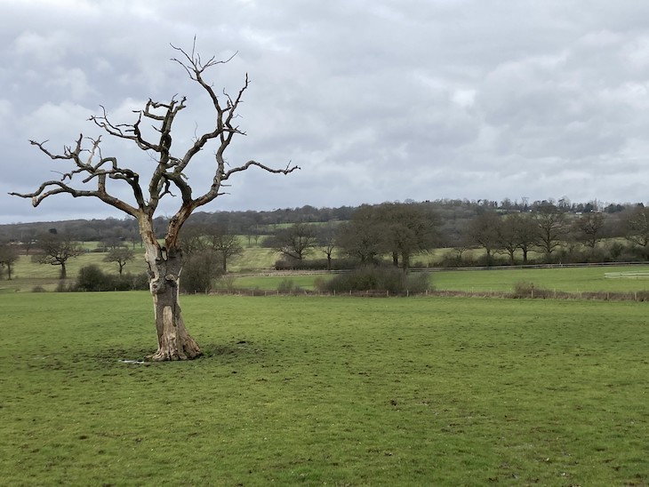 A view of Brockley Hill near Elstree