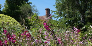 Flowers And Follies: The Intriguing Ways Of Great Comp Garden
