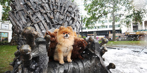 Leicester Square Now Has Its Very Own Iron Throne