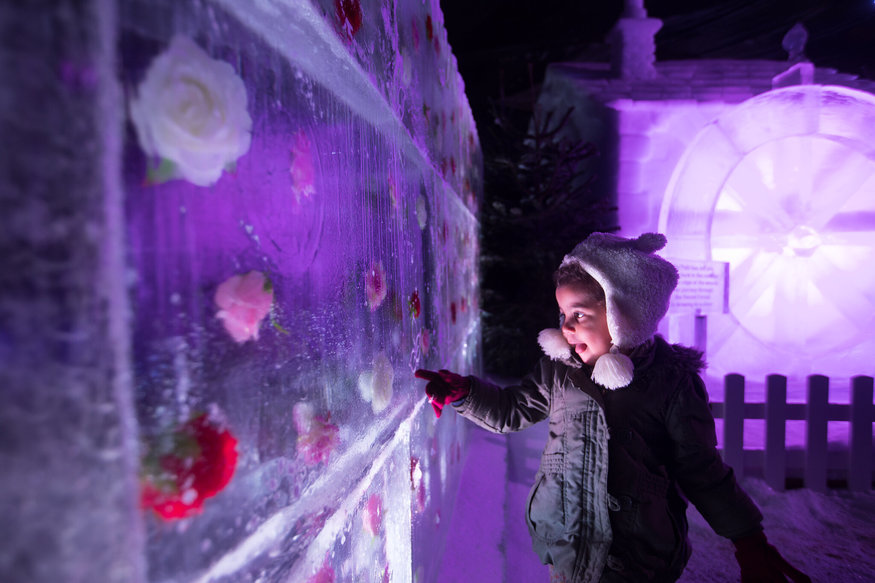 A small boy is entranced by an ice sculpture at Winter Wonderland