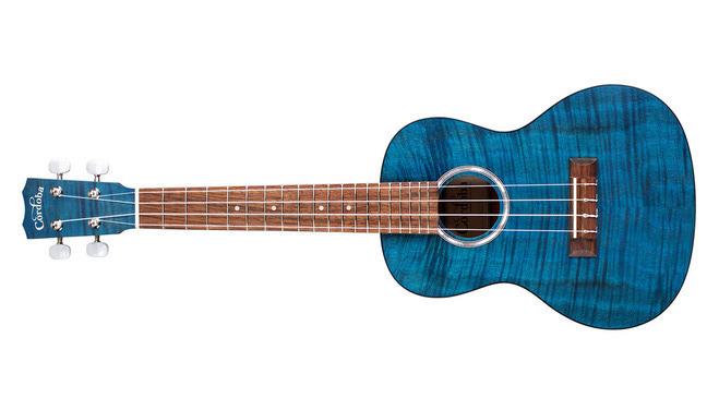 A blue ukulele